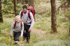 En pojke och hans fader som tillsammans går på en slinga mellan träd i en skog, högstämd sikt arkivbild