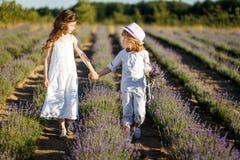 En pojke som ger lavendel, blommar till flickan på solnedgången i lavendelfältet Förälskelse, romans, kamratskap och familjbegrep royaltyfria bilder