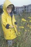 En pojke som undersöker vildblommorna på en regnig dag, Washington, D C Royaltyfri Bild