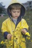 En pojke som undersöker vildblommorna på en regnig dag, Washington, D C Royaltyfri Fotografi