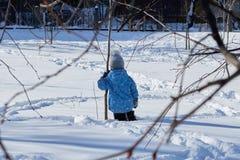 En pojke står knä-djup i snön tillbaka till oss och klamra sig fast intill trädet arkivfoton
