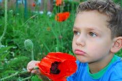 En pojke står nära blommavallmo. Arkivbilder