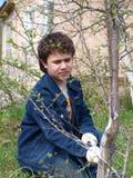 En pojke tar omsorg av treesna i trädgården royaltyfri foto