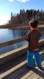 En pojke tycker om att fiska Royaltyfri Fotografi