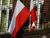 En polsk flagga i vinden royaltyfria bilder