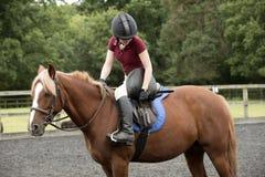 En ponnyryttare som drar åt omfångremmarna på en sadel Royaltyfria Bilder