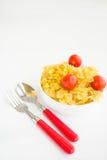 En portion av pasta och tomater Arkivfoton