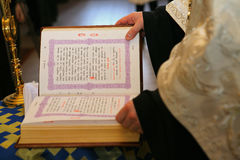 En präst läser den heliga bibeln Royaltyfri Bild