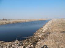 En premier ressort sur le rivage de l'étang photos stock