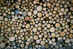 En proper bunt av klippta trädstammar Hög upplösning, kant att kanta Arkivbild