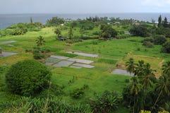 Sjösidalantgård -- Horisontal Arkivbild