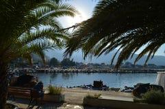 En puerto debajo de la palma Fotografía de archivo libre de regalías