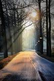 En puesta del sol Fotos de archivo libres de regalías