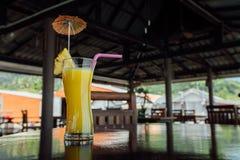 En régénérant le verre de cocktail d'ananas avec des tranches d'ananas, dentelez les pailles de jus et la décoration Images stock
