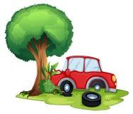 En röd bil som knuffar till på ett träd Arkivfoto
