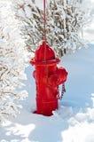 Röd brandpost i snow Royaltyfria Bilder