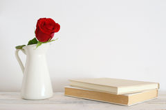 En röd rosblomma i en vit vas fotografering för bildbyråer