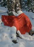 En röd sjal på en vit snö royaltyfri fotografi
