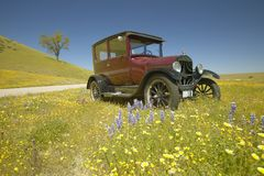 En rödbrun modell T som kör ner en scenisk väg som omges av vårblommor av av rutt 58, Shell Road, CA Royaltyfri Foto