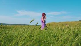 En rödhårig flicka i en purpurfärgad klänning promenerar en bana längs ett fält av grönt gräs och spikelets som svänger i vinden arkivfilmer