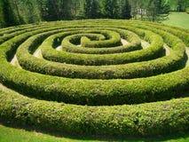En röra sig i spiralbuskemaze Royaltyfri Foto