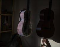 En rad av den klassiska oavslutade gitarren på seminariet i solljus Arkivbild