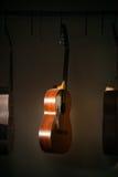 En rad av den klassiska oavslutade gitarren på seminariet i solljus Royaltyfria Bilder
