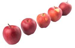 En rad av den röda äppledroppen Royaltyfri Fotografi