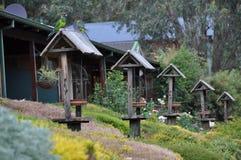 En rad av fågelbad och matande stationer i utomhus- trädgård arkivbilder