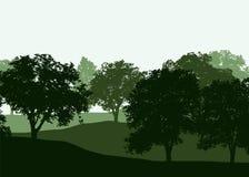 En rad av lövfällande träd i en grön skog i tre lager under royaltyfri illustrationer