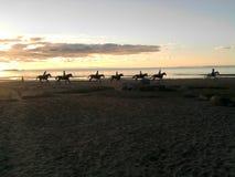 En rad av ryttare på en solnedgångstrand Royaltyfria Foton