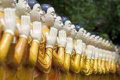 En rad av statyer på Pidurangala den buddistiska templet i Sigiriya, Sri Lanka Arkivfoto