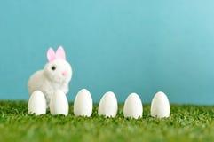 En rad av vita easter ägg med en fluffig kanin Royaltyfri Foto