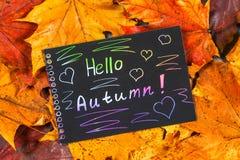 En ram av gula och orange höstlönnlöv på grå mörkerbetong Svart platta med kulör text Inskriften är hälsningau Royaltyfria Bilder