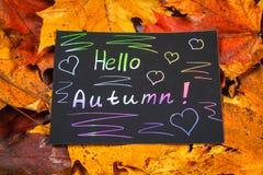 En ram av gula och orange höstlönnlöv på grå mörkerbetong Svart platta med kulör text Inskriften är hälsningau Royaltyfri Fotografi