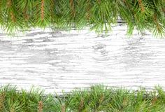 En ram som göras av jultreefilialer Royaltyfri Fotografi