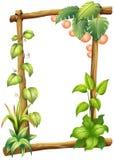 En ram som göras av trän med växter Arkivfoto