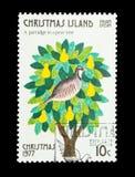 En rapphöna i ett päronträd Royaltyfri Bild