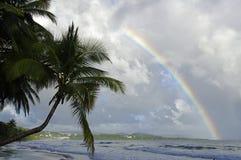 En regnbåge ovanför Ladiamantstranden, Martinique royaltyfria foton