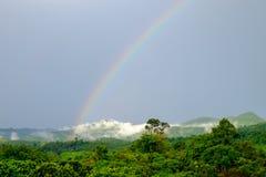 En regnbåge som uppstod efter regn, som uppstår på skogen på berget arkivbild