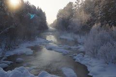 En riktig Siberian vinter Arkivbilder