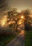 En ritt i solnedgången Royaltyfri Fotografi