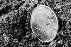 En rubel på jordningen fotografering för bildbyråer