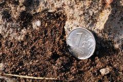 En rubel på jordningen royaltyfri fotografi