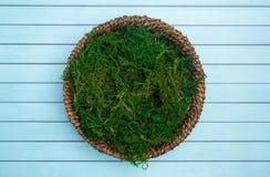 En rundagräsplan Moss Digital Newborn Backdrop för nyfödda fotografer arkivbild