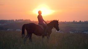 En ryttare går på en häst, ultrarapid stock video