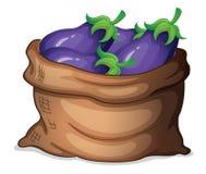 En säck av aubergine vektor illustrationer