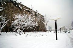 En sällsynt tung snö Fotografering för Bildbyråer