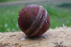 En sönderriven upp röd boll royaltyfria foton