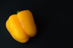 En söt peppar på svart bakgrund fotografering för bildbyråer